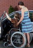 Une femme agée handicapée entrant dans une voiture Image libre de droits
