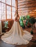 Une femme assez enceinte Photographie stock libre de droits
