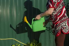 Une femme avec une boîte d'arrosage porte l'eau dans un potager Chronométrez pour arroser les usines Image libre de droits