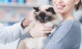 Une femme avec son chat à la clinique vétérinaire Photographie stock