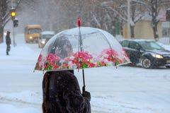 Une femme avec un parapluie transparent traverse la route blizzard image libre de droits