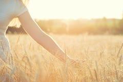 Une femme dans un domaine de blé, contacts l'épillet d'or photographie stock libre de droits