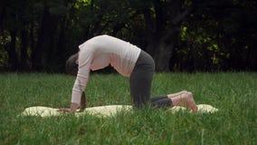 Une femme enceinte faisant le yoga en parc sur le tapis, se tenant sur ses genoux dans l'asana de Katuspadasana, pose de chat banque de vidéos