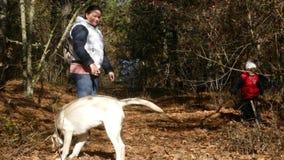 Une femme et un jeu d'enfant avec un chien sur les feuilles tombées banque de vidéos