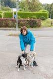 Une femme fait la laisse ses deux chiens Images libres de droits
