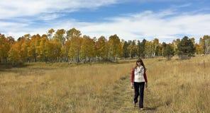 Une femme flâne par le paysage d'automne dans le San Francisco Mounta Photo stock