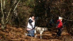 Une femme joue avec un chien dans la forêt banque de vidéos
