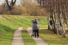 Une femme marche en parc près des bouleaux avec un landau Élever la génération plus ancienne Activité à l'air frais parmi la verd image libre de droits