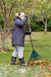 Une femme nettoie les feuilles photos libres de droits