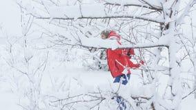Une femme patauge par la neige et les branches des arbres dans la forêt d'hiver banque de vidéos