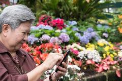 une femme plus âgée tenant le téléphone portable dans le jardin texti femelle plus âgé Photos stock
