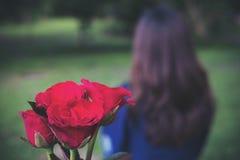 Une femme reviennent de la fleur de roses de couleur rouge photographie stock libre de droits