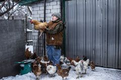 Une femme tient un poulet Vieille maison images libres de droits