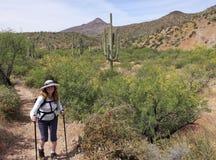 Une femme trimarde dans la région de conservation de ranch de croix de dent image stock