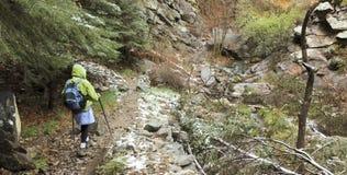 Une femme trimarde par un canyon luxuriant Photos libres de droits
