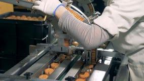 Une femme vérifie des biscuits et sélectionne a déserté ceux 4K clips vidéos