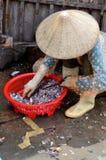 Une femme vend des poissons de fourrage à un marché local de fruits de mer de port de Vinh Luong Image stock