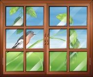 Une fenêtre avec vue sur l'oiseau Photos stock