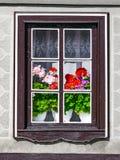 Une fenêtre en dehors de la maison avec les fleurs de floraison de géranium dans une vieille maison européenne image stock