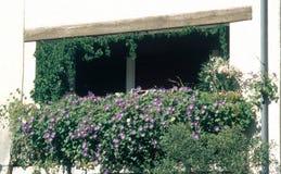 Une fenêtre fleurie dans les sud de DrÃ'me, Buis-les Baronnies, France photos stock