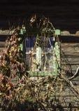 Une fenêtre rustique avec des vignes Photo stock