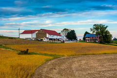 Une ferme dans le comté de Lancaster rural, Pennsylvanie photographie stock libre de droits