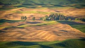 Une ferme dans le Palouse comme vu de la butte de Steptoe Image stock