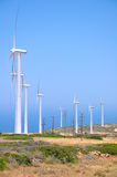 Une ferme de vent Photo libre de droits
