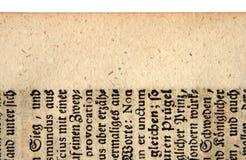 Une feuille antique Photographie stock libre de droits