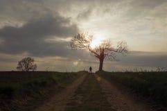 Une figure à capuchon mystérieuse silhouettée contre le coucher de soleil par un arbre mort sur un chemin de pays Avec la fus?e d photo stock