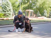Une fille étreint son chien tout en s'accroupissant un chien Photos stock