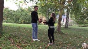 Une fille avec une promenade de type en parc et jettent des feuilles d'automne clips vidéos