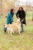 Une fille avec un garçon jouant avec un chien d'arrêt dans la forêt d'automne images libres de droits