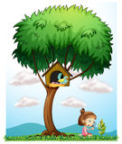 Une fille avec une lentille d'agrandissement sous un grand arbre Photographie stock