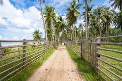 Une fille dans une robe verte marche le long d'un chemin avec une barrière en bois et des palmiers le long de l'océan Photographie stock