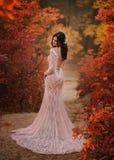 Une fille de brune avec de longs cheveux, dans une robe rose somptueuse avec un long train et un dos ouvert et séduisant Les pose photographie stock