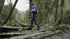 Une fille heureuse entre dans la forêt profonde de buis et transforme le chemin en à grand arbre couvert de mousse banque de vidéos