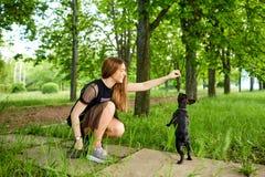 Une fille joue avec son bouledogue français de chien en parc Photographie stock libre de droits