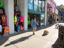 Une fille marchant avec son chien Images stock