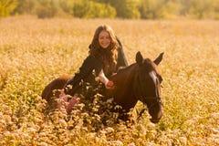 une fille montant une alimentation de cheval images libres de droits