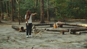 Une fille s'assied dans la forêt lisant un livre La fille s'assied sur un rondin à côté du feu et avec le chien banque de vidéos