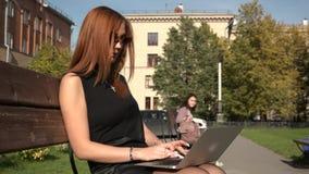 Une fille utilise un ordinateur portable se reposant sur un banc banque de vidéos