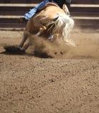 Une fin vers le haut de vue de galoper de cheval Photo stock