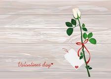 Une fleur blanche avec l'arc et le ruban rouges et avec le blanc vide Ca Photographie stock libre de droits