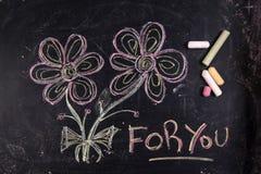 Une fleur pour vous photographie stock libre de droits