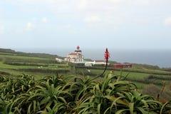 Une fleur solitaire d'aloès dans la perspective d'un phare près du village de Nordeste Photographie stock