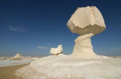 Dans le désert blanc Photographie stock libre de droits