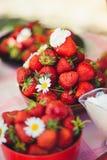 Une fraise fraîche dans une cuvette sur une table dans un jardin d'été est ornée avec des fleurs de camomille avec une étape disc photographie stock libre de droits