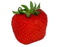 Une fraise rouge Photographie stock libre de droits