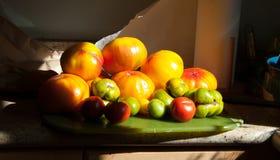 Une générosité de jardin des tomates d'héritage photo libre de droits